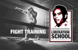 Revolutionary Abolitionist Movement: Fight Training
