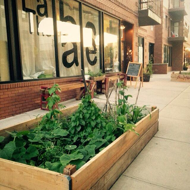 Radical Gardeners NYC Open Hours